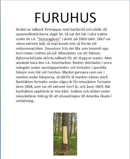 Text Furuhus
